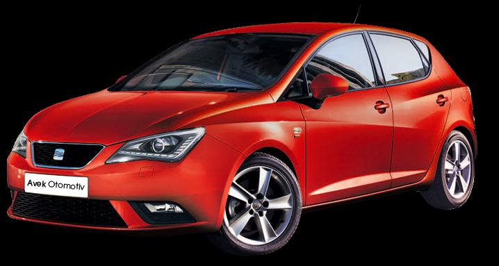 Seat Ibiza 1.4 TDi Responsechips